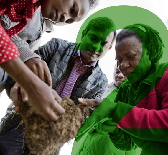 2. group of people examine a soil sample